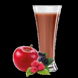 Ovocňák - Mušt 100% jablko+lesné ovocie  250 ml