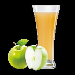 Ovocňák - Mušt 100% jablko 200 ml