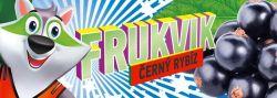 Ovocná tyčinka FRUKVIK pro děti černý rybíz Pharmind Corporation s.r.o.