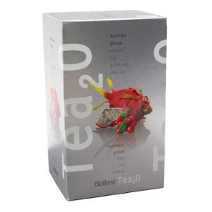 Biogena Tea2O Brusinka & Pitaya 20x2,5 g Ovocný čaj aromatizovaný, porcovaný Biogena CB s.r.o.