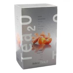 BiogenaTea2O Zázvor & Mandarinka 20x2,5g