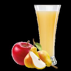 Ovocňák mošt 100% jablko+hruška 250 ml