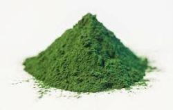 Sedmikráska bylinný extrakt Chlorella 250ml