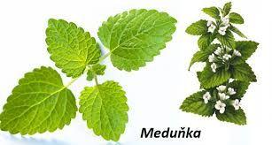 Sedmikráska bylinný sirup Meduňka 500 ml pozitivní nálada, relaxace a spánek, kognitivní funkce a duševní zdraví, trávení, doplněk stravy Rodinná farma Sedmikráska