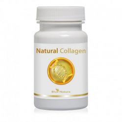 Natural Collagen: rybí kolagén + šípky + organická síra (MSM)